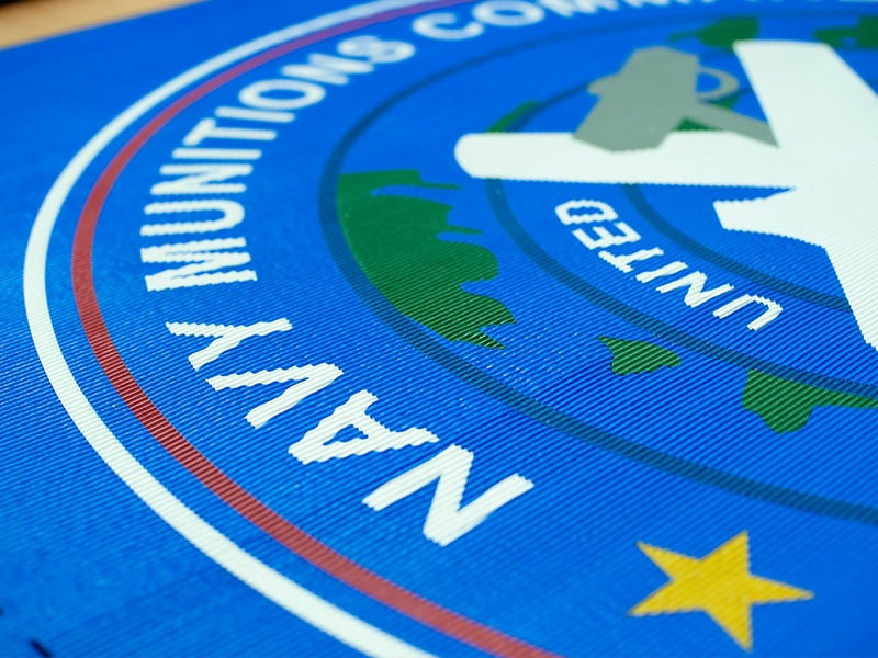 Incredible blue outdoor mat with government logo